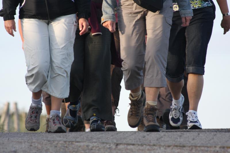 Caminhar pode ajudar a prevenir doenças cardíacas, diabetes, depressão e alguns tipos de câncer